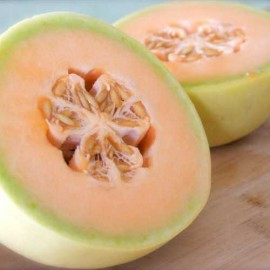 Melon Honeydew Tam Dew Packet of 20 Heirloom Seeds