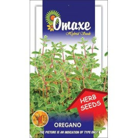 Oregano Seeds, 100 Seeds Pack By Omaxe