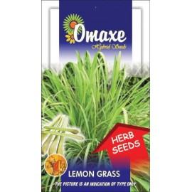Lemon Grass Seeds, 100 Seeds Pack By Omaxe