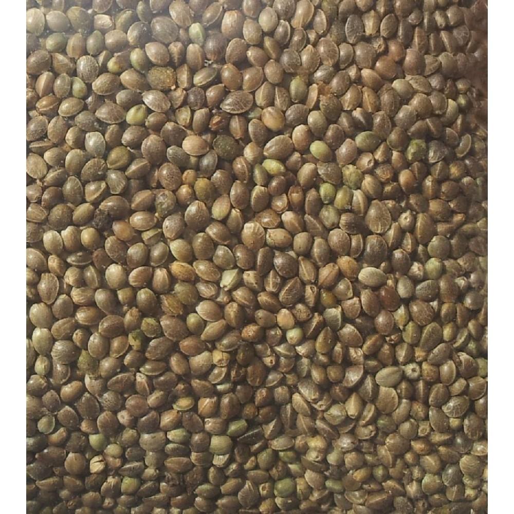 Buy Hemp Seeds Online Benefits Of Hemp Seeds Buy