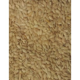 MUSKMELON Seeds 200g