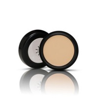 Missha The Style Perfect Concealer #Light Beige