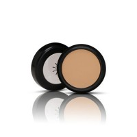 Missha The Style Perfect Concealer #Natural Beige