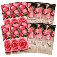 Nature Republic Real Nature Mask 10 Sheets for Skin Hydration (Rose)