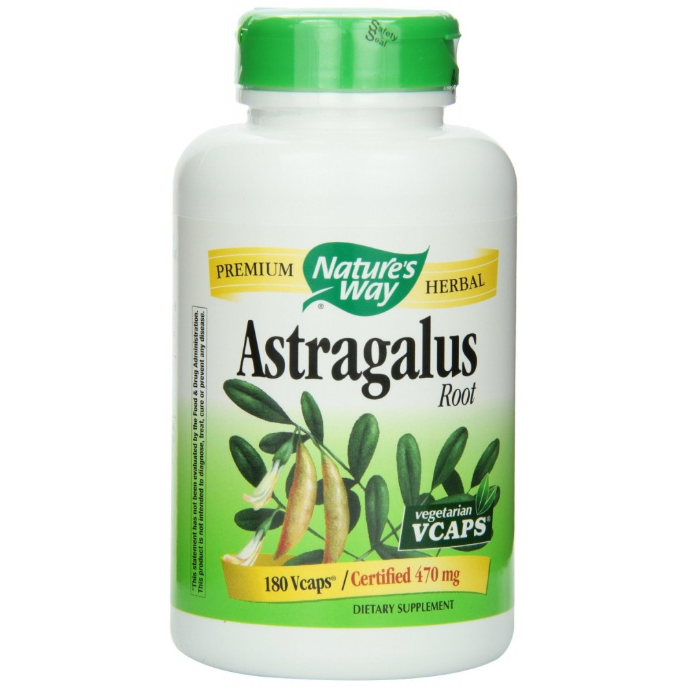 Nature S Way Astragalus Root