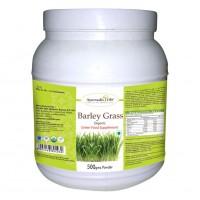 Ayurvedic Life Barley Grass 500 Gms Powder