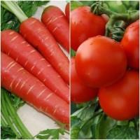 Biocarve Summer Vegetable Kit 2 - 2 Pkts